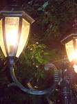 lamplight by Mad-Hatter-LCarol