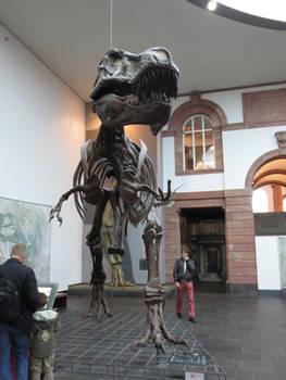 Cretaceous King