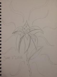 Iris by Faith48Raven