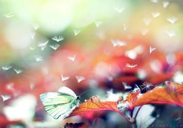 Wonderland by kimerajam