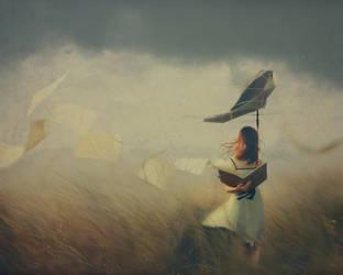 Storm by kimerajam