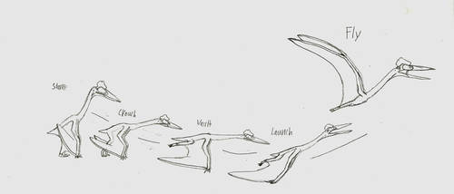 Pterosaur Launch Step by Step by Troyodon