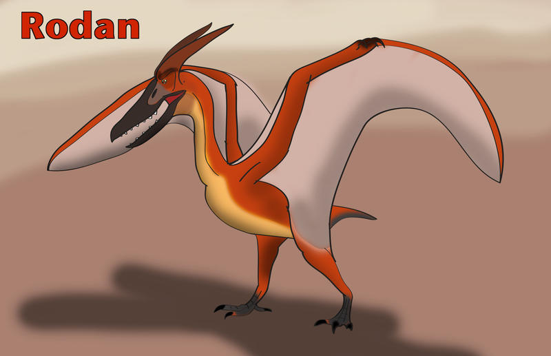 Concept - Rodan by TroytheDinosaur on DeviantArt