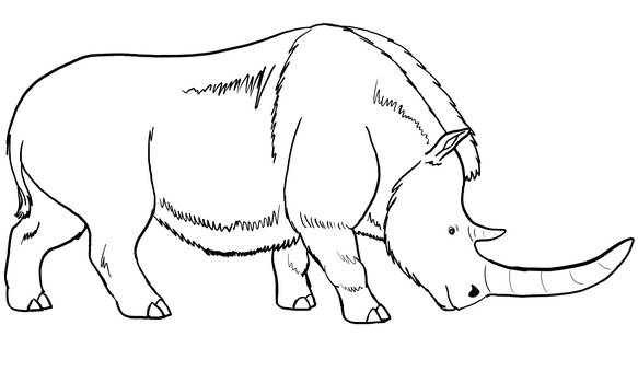 Woolly Rhino Base