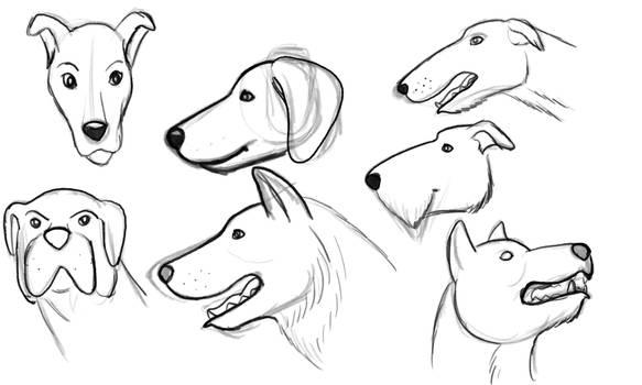 Dog Head Practice