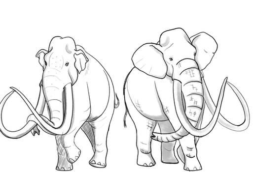 Columbian Mammoth Variations