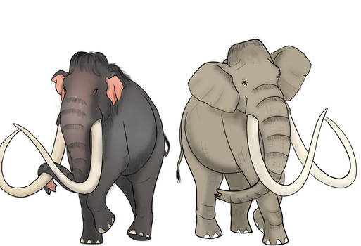 Columbian Mammoth Varations 1 and 2