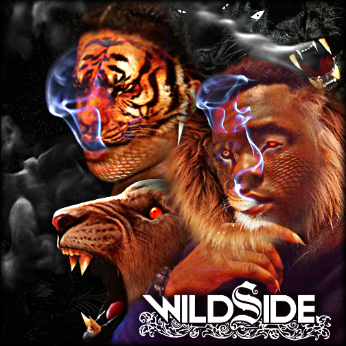 Wildside by Outlawsarankan