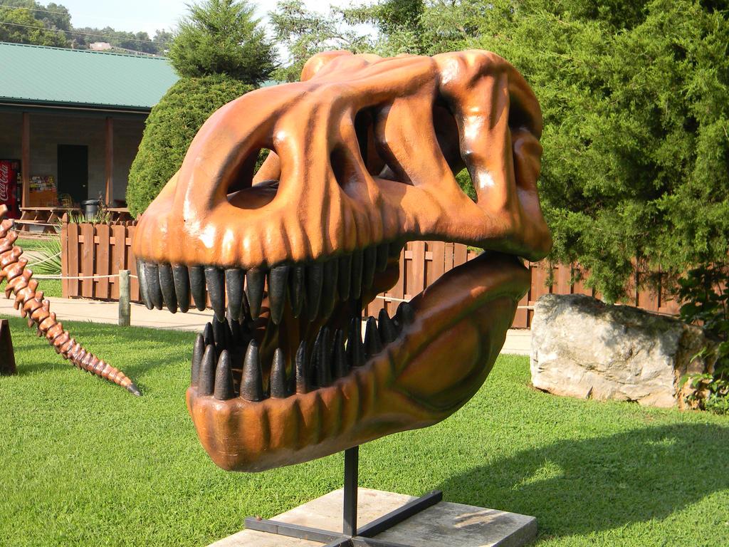 Dinosaur World 25 by Ren-iix