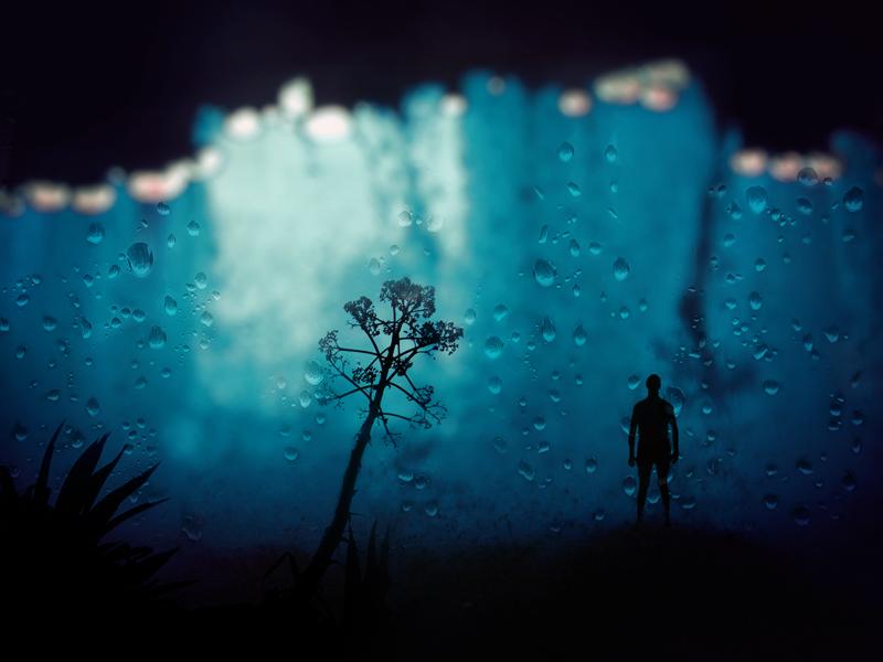 man from aquarium by Cestica