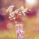 breath in a bottle. by simoendli