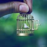 fly away. by simoendli