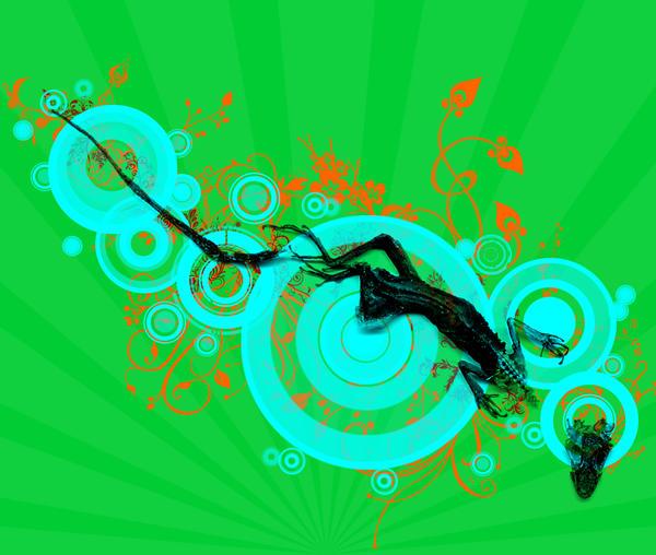 Lizard by Lunet