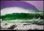 Wave of Green