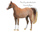 Chestnut Rabicano Arabian Horse Precut