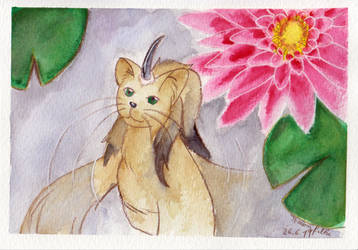 Nekoi with sea rose