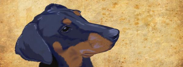 Dog head gift by rik-akeront