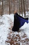 Winter_Movement