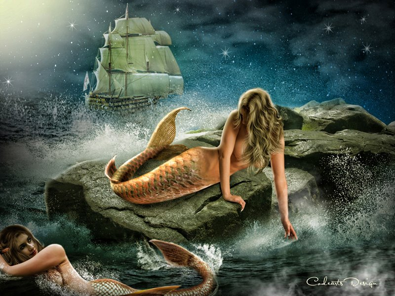 Two Mermaid By Codeartworks Pisces Art