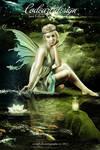 Crystal Fairy's