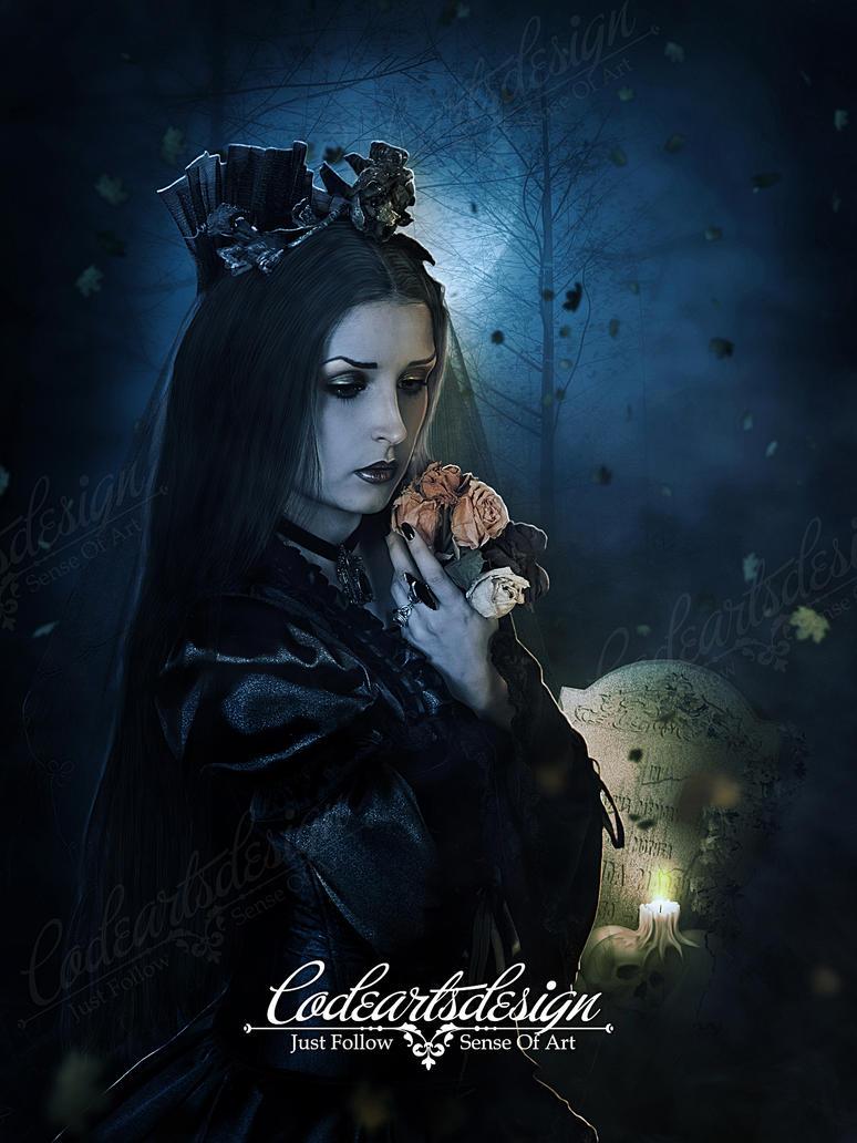Black Widow by codeartworks