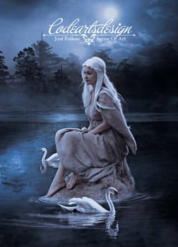 ==== THE SWAN LAKE ====