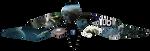 Thrivewebsiterollovers by Sciocont