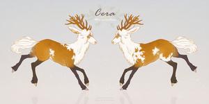 Cera | Suoja by menuli