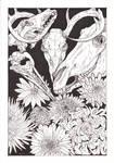 chrysanthemum - inktober [day 11]