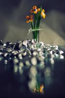 Glass flowers by ChudnayaMamba
