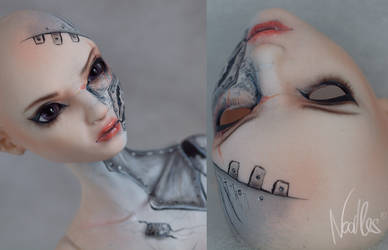 Author BJD from Anissah by NoodlesCZ