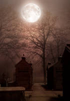 Premade Background 24 by StarsColdNight cemetery by StarsColdNight