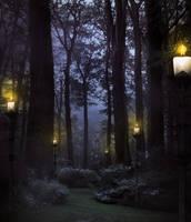 Secret place Premade BG by StarsColdNight