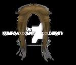 short II hair PNG