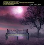 Purple Night Premade Bg By Starscoldnight