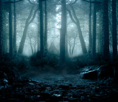 Woods premade BG II by StarsColdNight