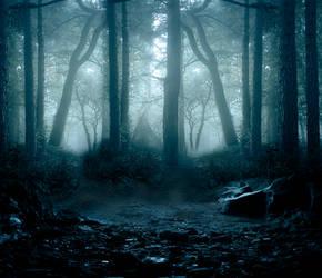 Woods premade BG II by StarsColdNight