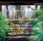 Enchanted forest spot premade BG