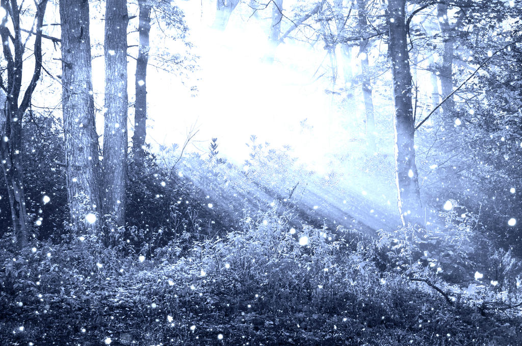 Frozen forest premade BG by StarsColdNight