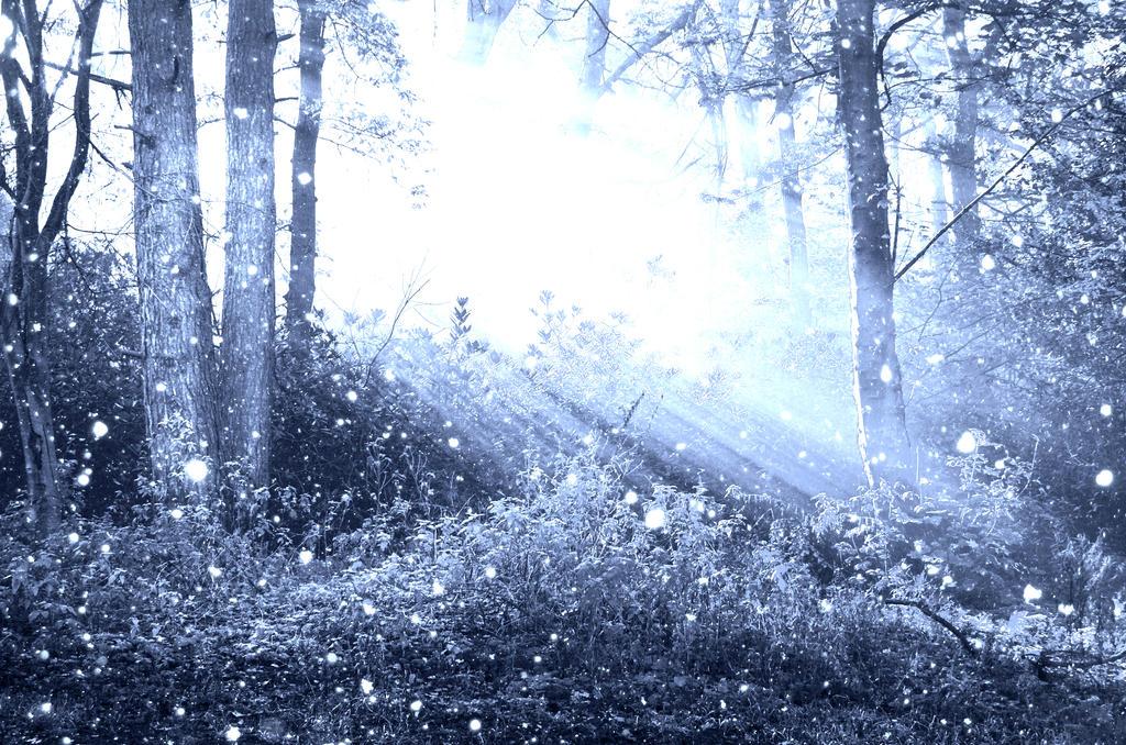 Frozen forest premade BG by StarsColdNight