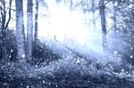 Frozen forest premade BG