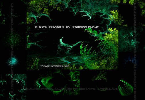 Plants fractals by STARSCOLDNIGHT