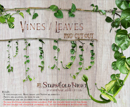 Vines leaves by StarsColdNight