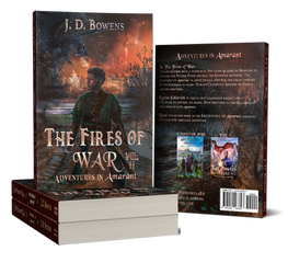 The Fires of War Book cover