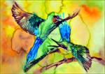 Merops philippinus