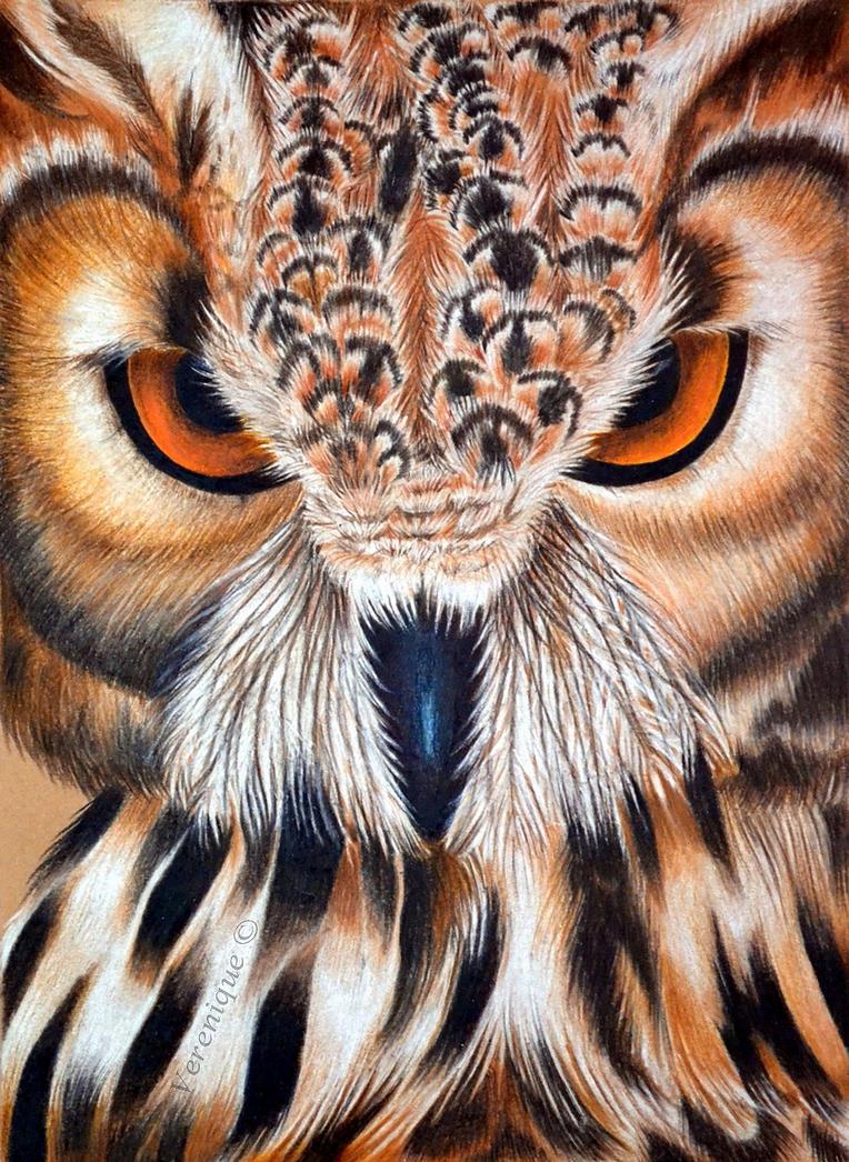 Eurasian eagle-owl by Verenique