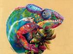 Multicolored chameleon