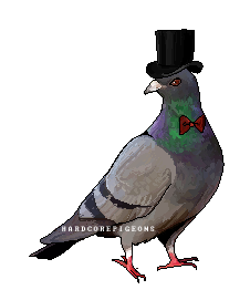 A charming Fowllow by HardcorePigeons