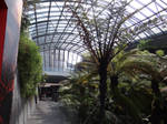 Vulcania's greenhouse