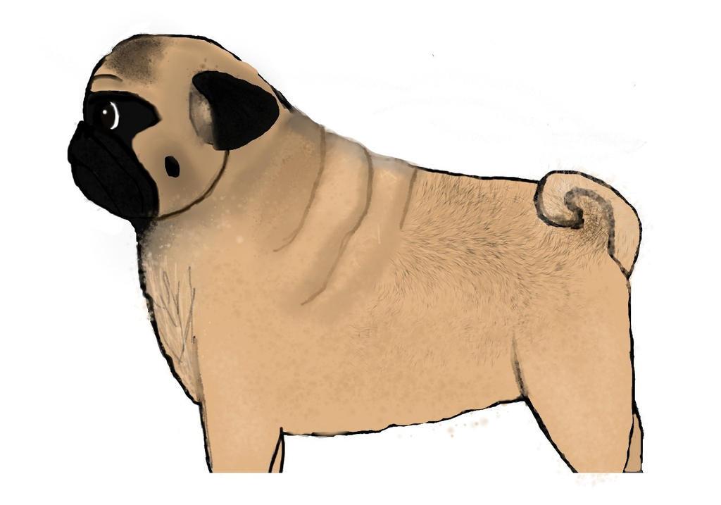 Pug by babybee1